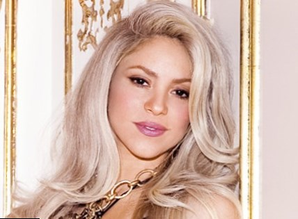 shakira height weight age 4 - Top 10 Celebrity Breast