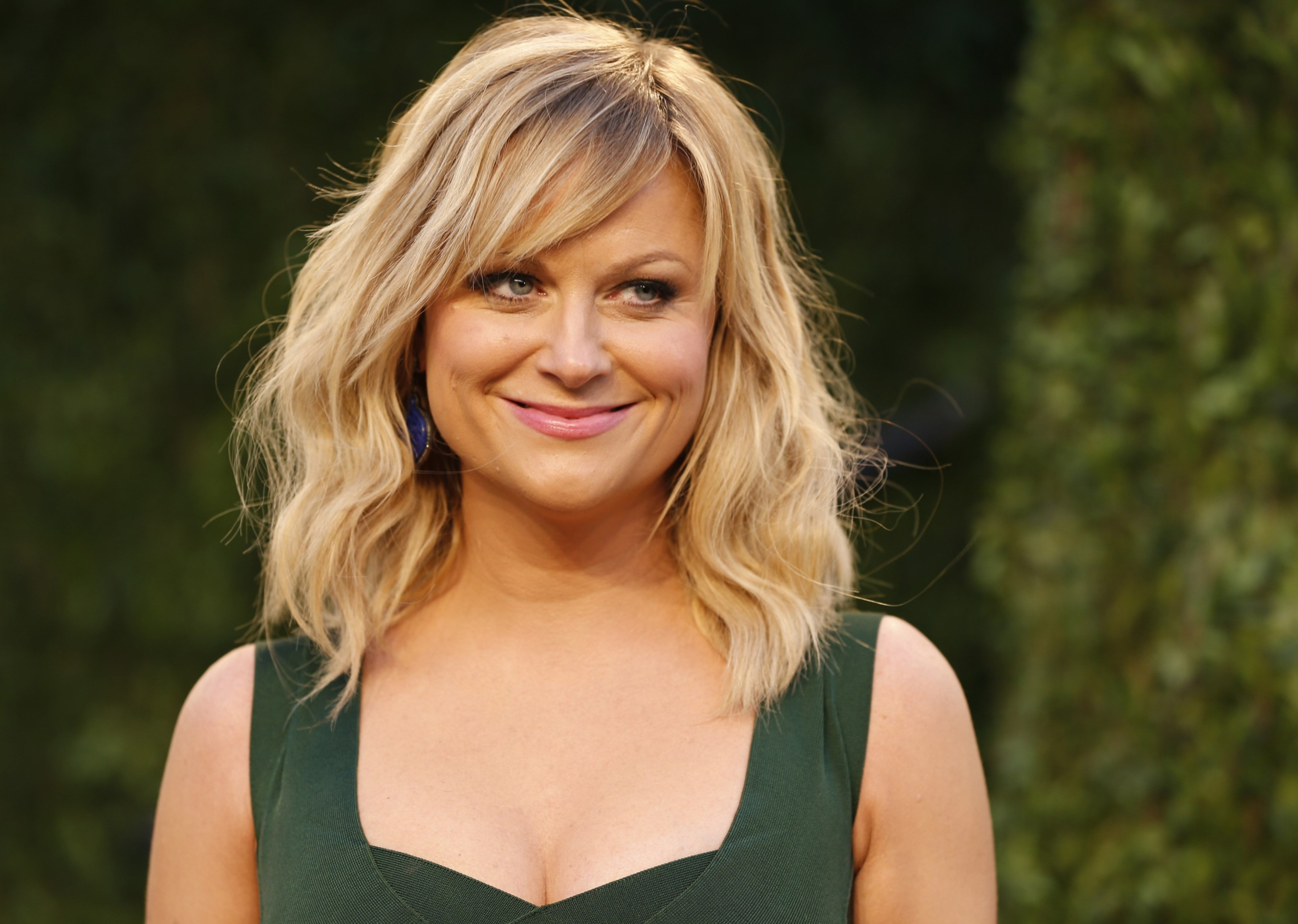 Amy Poehler Height, Weight, Age