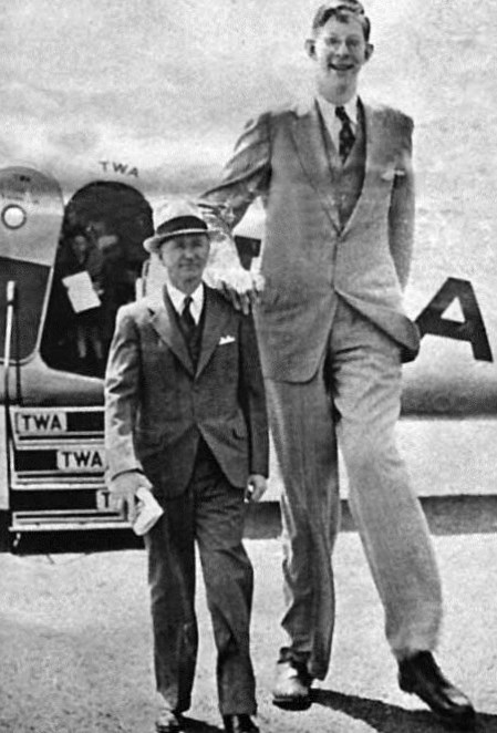 robert wadlow weight height and age body measurements
