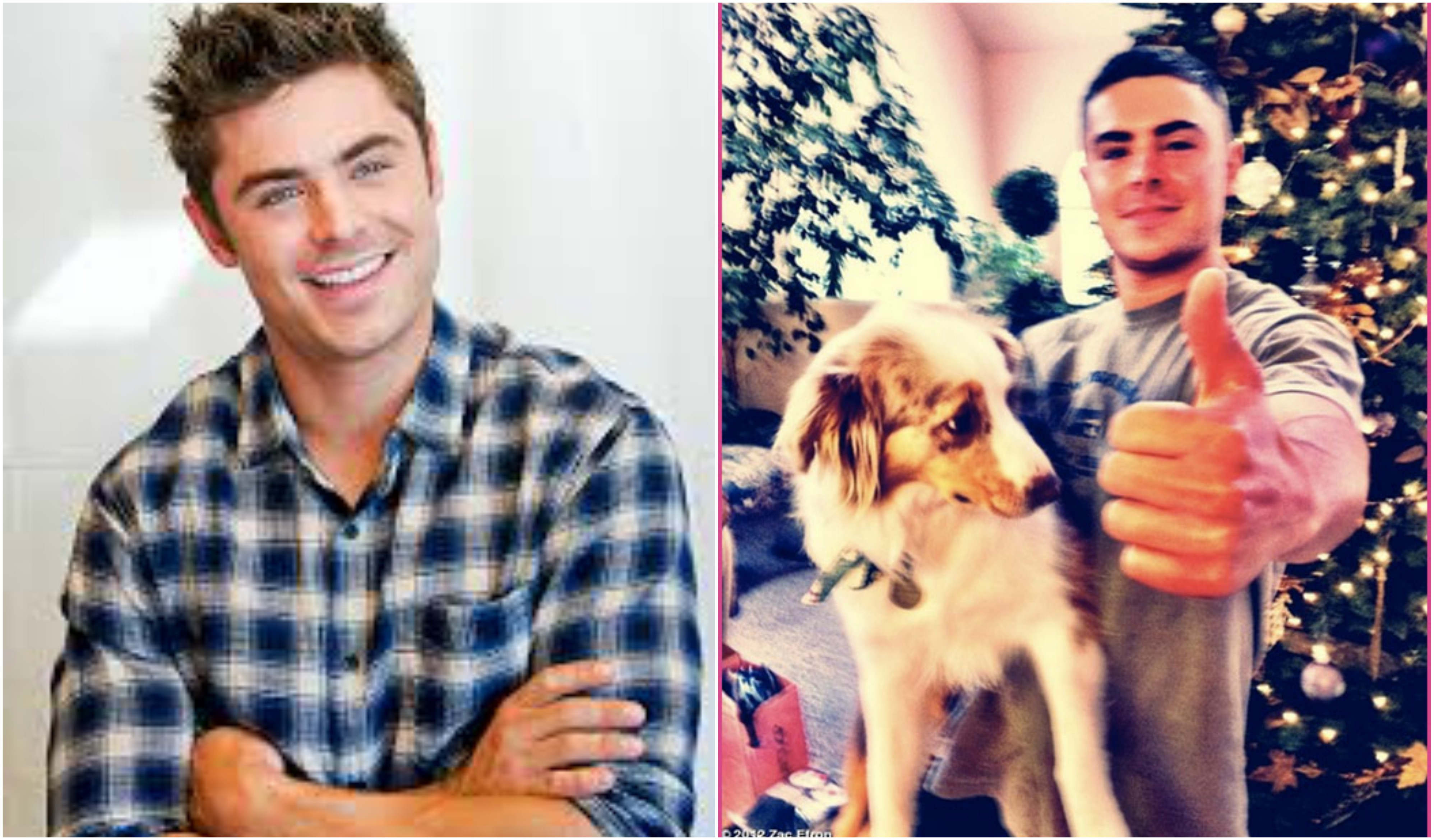 Zac Efron dog Puppy