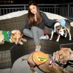 Dog mom Ariana Grande. She has 4 Pets