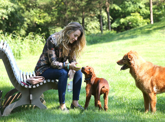 blake-lively-pets-4