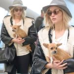 Jennifer Lawrence has a dog and a cat