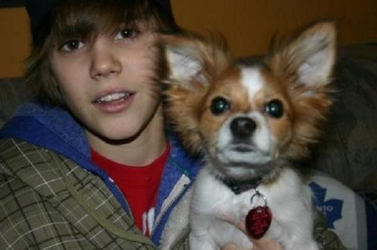 Justin Bieber Pets
