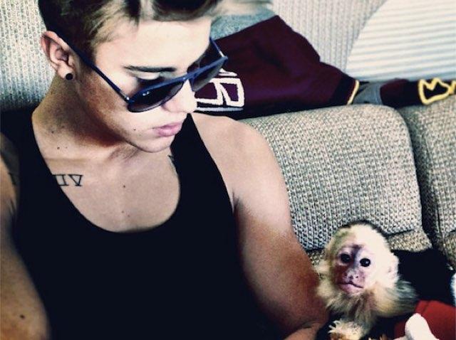 Monkey Mally