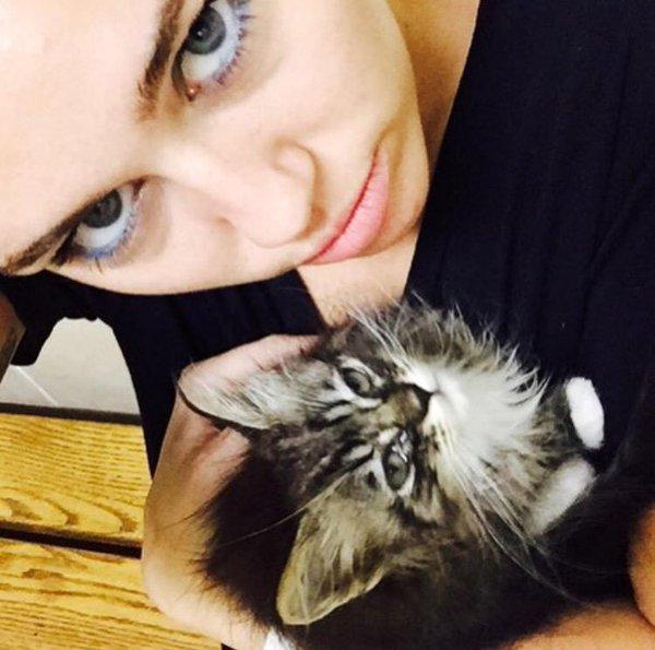 Cat Kiki
