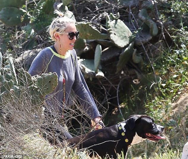 Dog MaryJane (Pitbull)