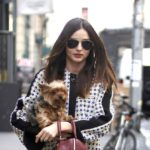 Miranda Kerr`s pet – dog Frankie