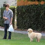 Nick Jonas and his faithful dog Elvis