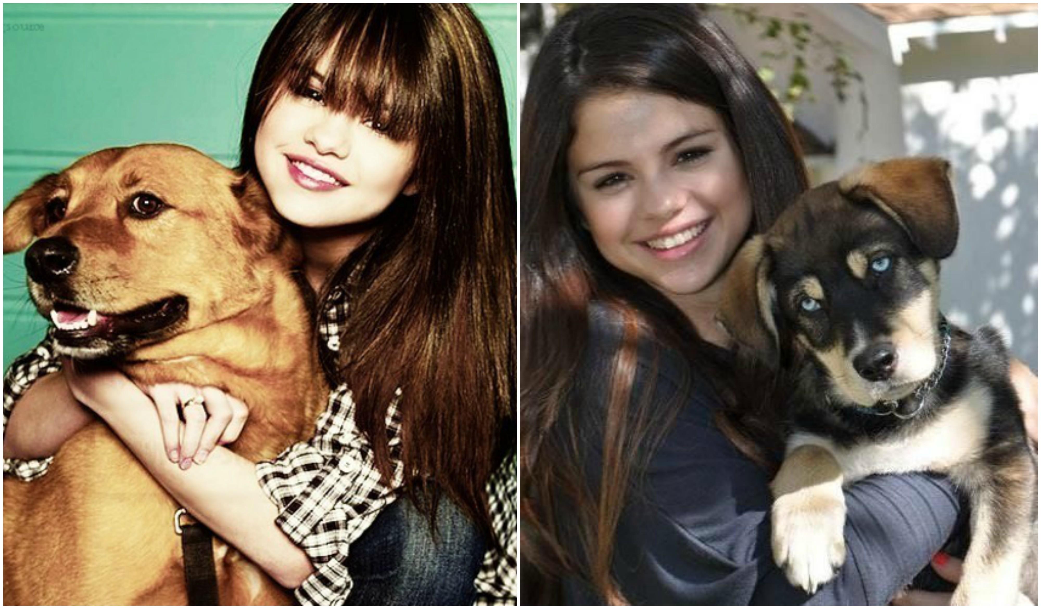 Selena Gomez`s Dog Willie, Dog Baylor