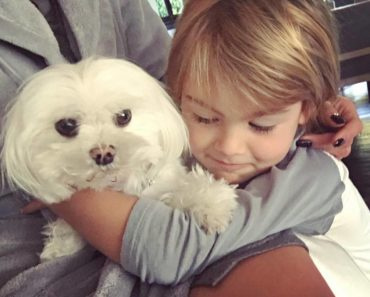 alessandra_ambrosio_pets_dog_lola-3