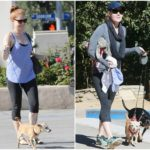 Amy Adams and her two furry friends Pippy and Sadie