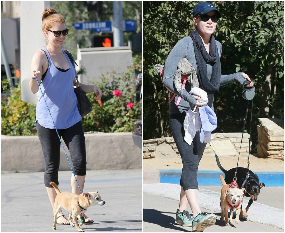 Amy Adams` pets - dogs Sadie and Pippy
