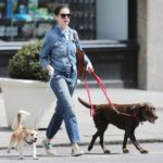 Oscar-winning-star Anne Hathaway has two dogs