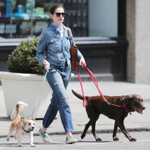 anne_hathaway_pets_dog_edward-and_esmeralda-1