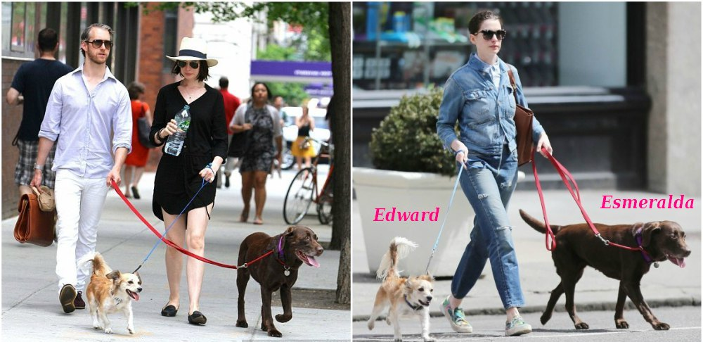 Anne Hathaway with her dogs Edward and Esmeralda