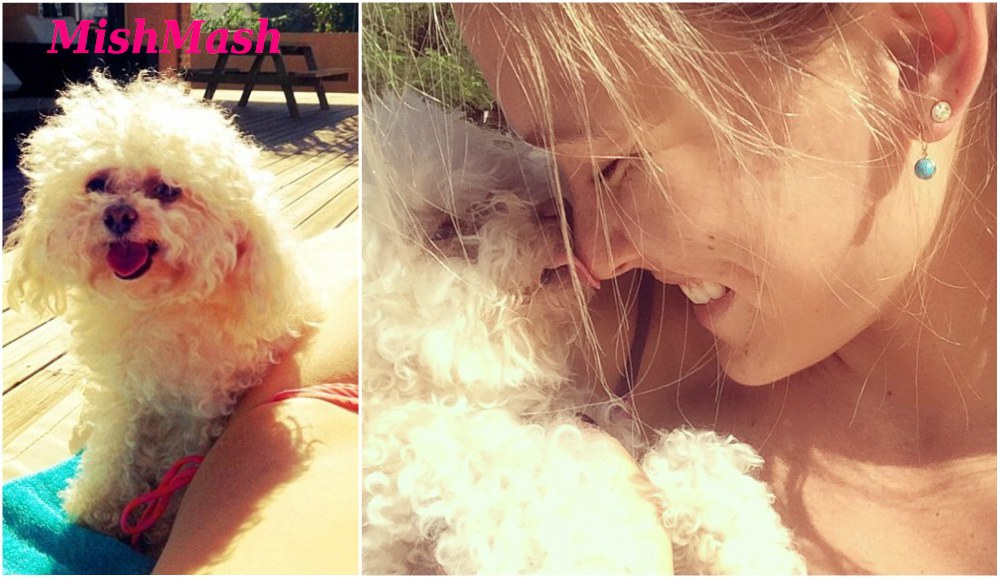 Bar Refaeli with her dog MishMash