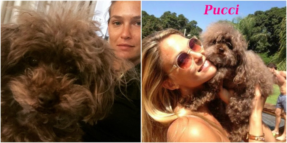 Bar Refaeli with her dog Pucci
