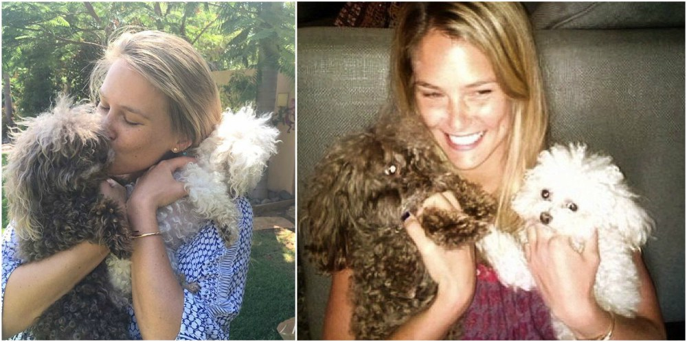 Bar Refaeli`s pet - dogs Pucci and MishMash
