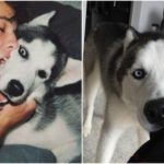 Cameron Dallas: to lose and find – Jake and Jaxx