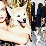Supermodel Cara Delevingne has a weakness to animals