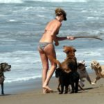 Charlize Theron`s love story with dogs is a long one