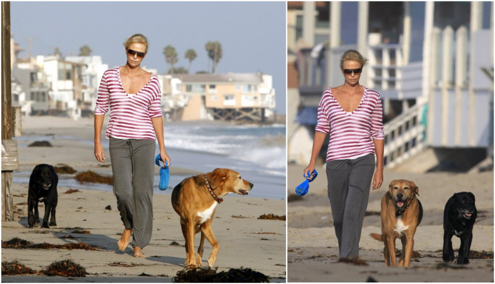 Charlize Theron`s pets - dogs Orson and Tucker