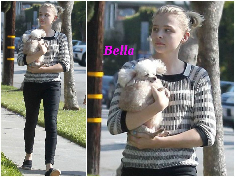 Chloe Grace Moretz with her dog Bella
