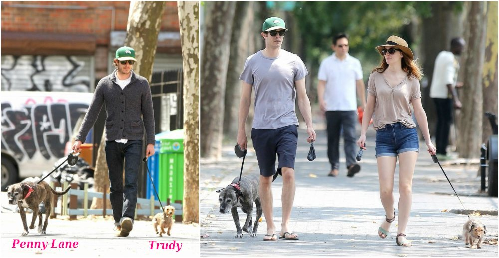Adam Brody waking with his dogs Penny Lane and Trudy