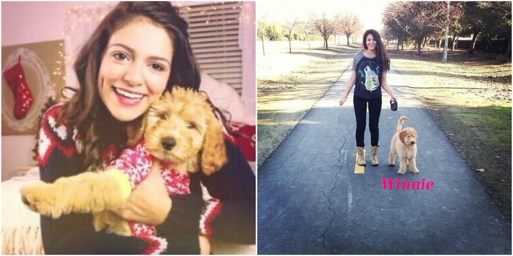 Bethany Mota pet - dog Winnie