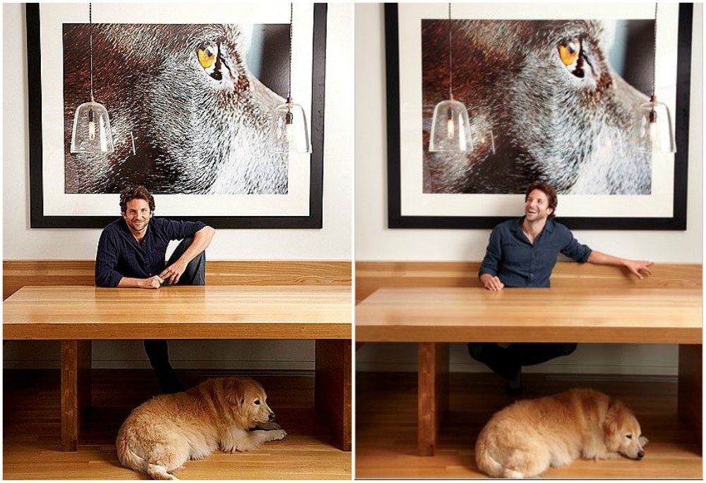 Bradley Cooper in his living room with his dog Charlotte and a portrain of Samson