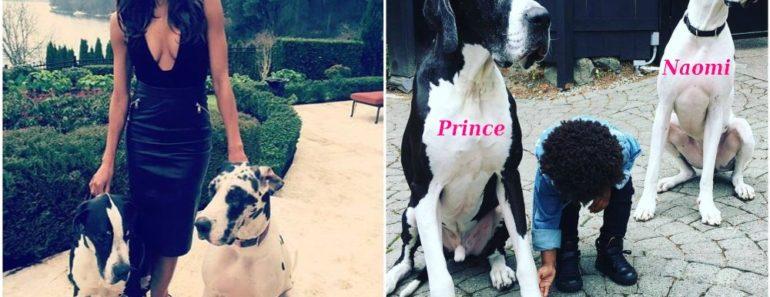 ciara_pets_dogs_prince_and_naomi
