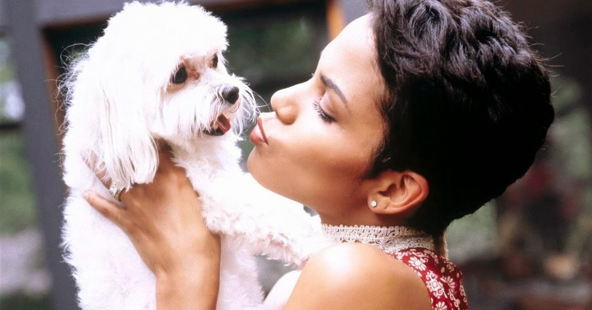 halle-berry-pets-3