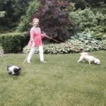 Hillary Clinton together with her husband has three adorable dogs