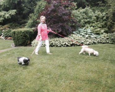 hillary-clinton-pets-8