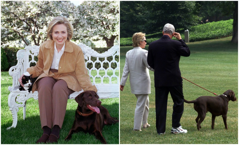 Hillary Clinton with Socks and Buddy