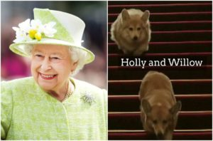 Queen Elizabeth dogs corgis - Holly and Willow
