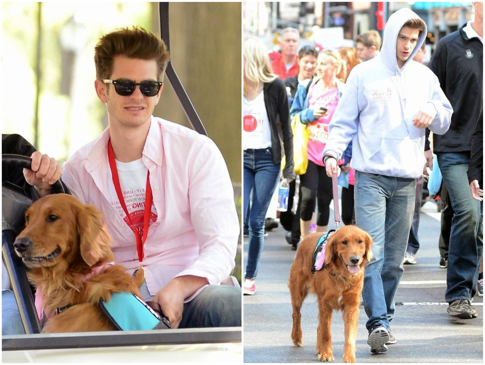 Andrew Garfield walking with his dog Ren