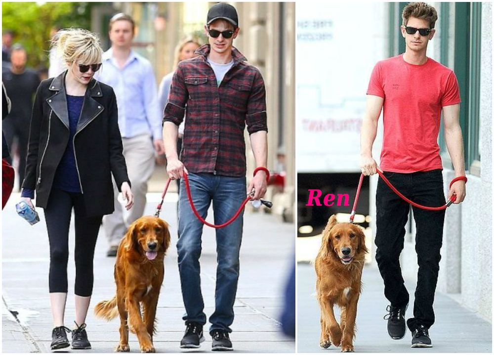 Andrew Garfield pet - dog Ren