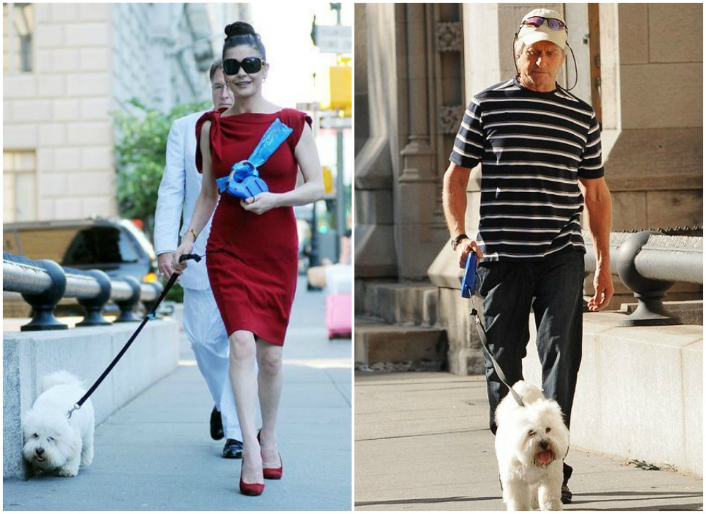 Catherine Zeta-Jones with her dog Figaro