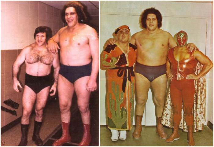 Andre The Giant's height, weight and body measurements