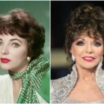 83 years is not an obstacle to look great for Joan Collins