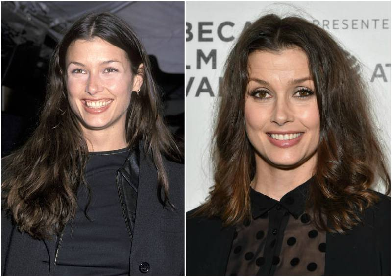 Bridget Moynahan's eyes and hair color