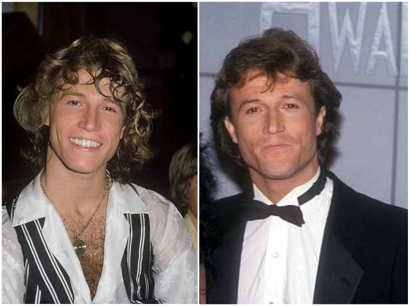 Andy Gibb's eyes and hair color