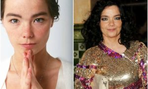 Bjork's eyes and hair color