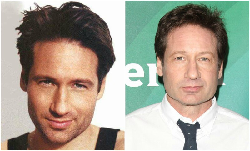 David Duchovny's eyes and hair color