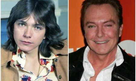 David Cassidy's eyes and hair color