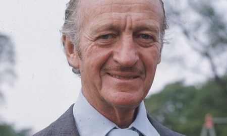 David Niven's eyes and hair color