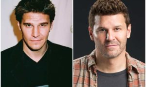 David Boreanaz's eyes and hair color
