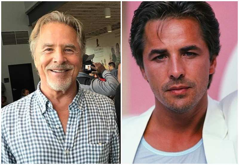 Don Johnson's eyes and hair color